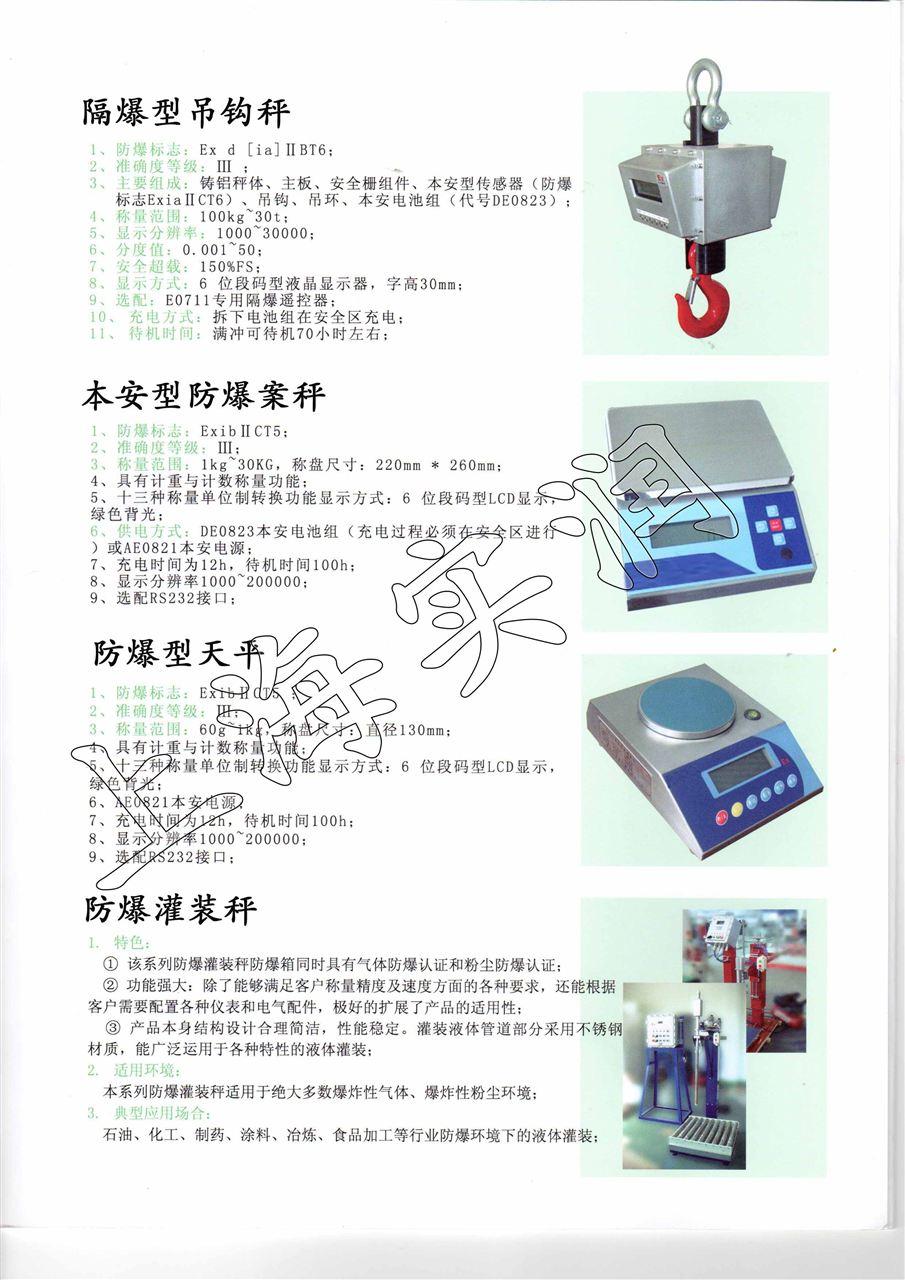 本案防爆型电子秤产品宣传彩页