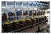 多型号全自动瓶装食用油灌装机