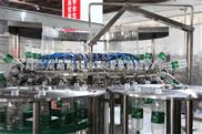 瓶裝水生產線 瓶裝水設備 瓶裝水灌裝機