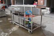 DY2500-小型红枣清洗机