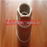 不锈钢BSPT立式内螺纹止回阀