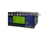 SWP-LK天康流量积算控制仪