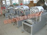 HY-10大型气流膨化机