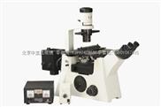 天津澳浦荧光显微镜总代理,澳浦DSY5000X倒置荧光显微镜