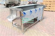 MSTP-1000-土豆清洗机