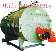 10吨燃气蒸汽锅炉,十吨燃气蒸汽锅炉,10吨天然气蒸汽锅炉