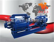 两级水环式真空泵2SK系列