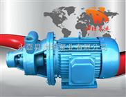单级旋涡泵1W