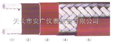 GWL45Wm-J2-220V-ZR天康伴热电缆