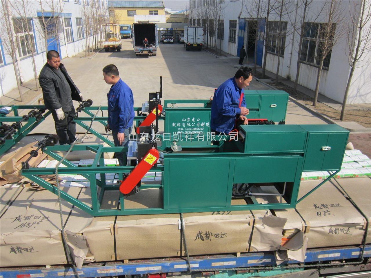 四川安岳柠檬套袋,柠檬套袋机,多功能自动柠檬套袋机厂家