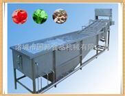 GB-4000-果蔬清洗设备 气泡清洗机  洗菜机