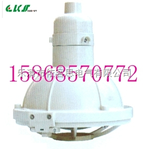 FAD-S-150W防水防尘灯/三防全塑灯具/带杆