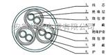 DCS仪表电缆 djypvp 10*2*1.5