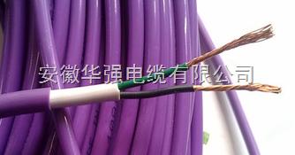 H02VVFRP 2*0.35电缆