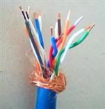 IA-DJYJP3VP3R-10*2*2.5计算机电缆