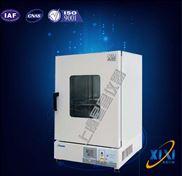全自动智能立式鼓风干燥箱技术参数 产品优质 合格 采购