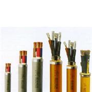 本安电缆EISC-SS-R