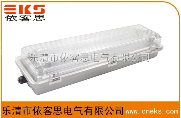 供应依客思:BAY52-Q/CBQY/BYS系列防爆防腐全塑荧光灯(单脚电感式 单脚电子式)