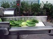 畅销蔬菜加工机械CHD80型数字切菜机