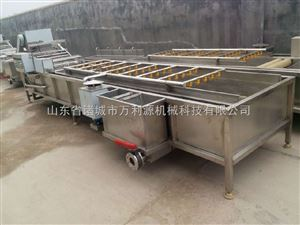 厂家专业生产气泡清洗机/樱桃清洗机/葡萄清洗机