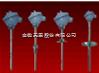 WZP系列天康装配热电阻