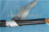 现货铠装控制电缆KVV22 5*2.5