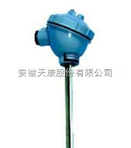 WZP2-231G无固定装置热电阻