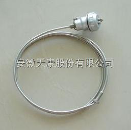 WRNK2-491双支铠装热电偶
