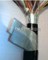DJYP2V22-7*2*1.0铜带屏蔽钢带铠装计算机电缆