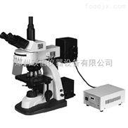 三目落射荧光显微镜XSP-63X