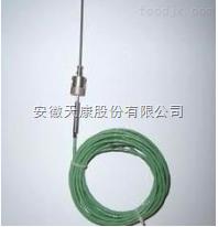 WRNK-191铠装补偿导线式热电偶