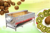 利杰食品机械红薯去皮机 土豆去皮机