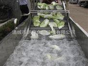 蔬菜清洗機-香菇清洗機加工設備