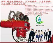 醇基燃料专用环保节能锅炉,灶具专用燃烧机厂家直销