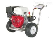 汽油機驅動冷水高壓清洗機POWER 300