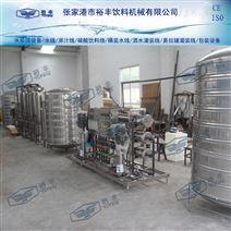 2500L双级反渗透水处理设备