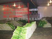 承包蔬菜保鲜冷库工程的公司