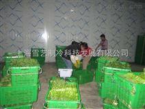 500平农产品保鲜冷库造价
