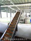 刺梨汁生产线厂家