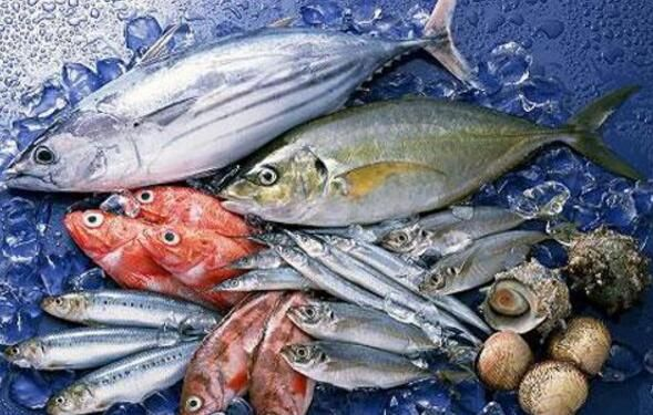 海鲜市场建造水产海鲜冷库