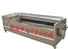 MQT/TP土豆清洗去皮机,高品质土豆剥皮机价格