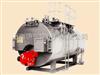 WNS2~WNS62t~6t卧式燃油燃气蒸汽锅炉